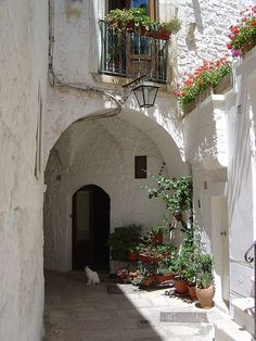 I used to walk this street to visit my nonno....! Cisternino, Puglia, Italy