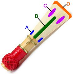 Scraping Bassoon Reeds Generalised Effects After Scraping each Area: A: Freer flatter low register B: Softer reed C: Flatter low register D: Easier tonguing easier ppp in high register