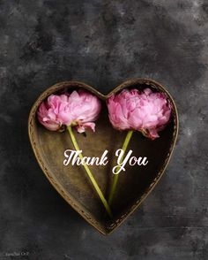 Happy Bday Wishes, Thank You For Birthday Wishes, Thank You Wishes, Funny Thank You, Thank You Quotes, Happy Birthday Greetings, Thank You Images, Love You Images, Thank You Messages Gratitude
