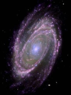 Photographic Print: Spiral Galaxy M81, Composite Image : 24x18in