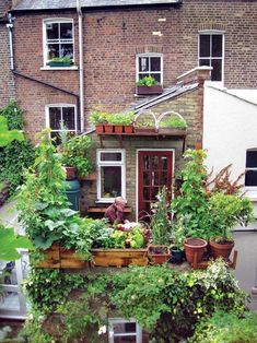 motherearthnewsmag: Small-Space Gardening Growing food in small...