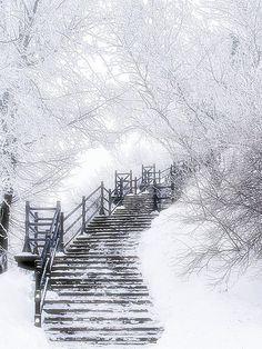 snow stairs...