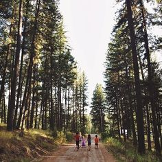 Now THIS is a driveway. #Montana