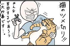 【試して!】猫の爪切り!苦労する飼い主が見つけた解決法とは!?【闇取引!】 - いまトピ Comics, Cats, Gatos, Cartoons, Cat, Kitty, Comic, Comics And Cartoons, Comic Books