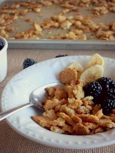 Paleo Cereal Flakes (AIP)   Cook It Up Paleo