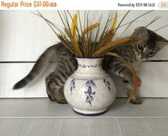 ❘❘❙❙❚❚ ON SALE ❚❚❙❙❘❘     Lovely Majolica vase numbered and signed Sberna Ceramics of Deruta Italy.  This gorgeous cream colored vase with blue accents  is hand painted and... #vintage #etsy #gifts