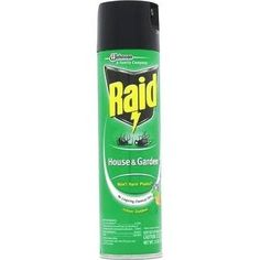 Raid House and Garden Bug Killer Indoor and Outdoor 11 Ounce Can *** Check out this great product.