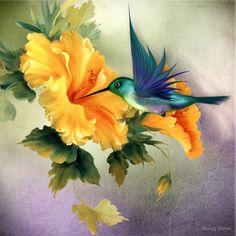 Little Humming Bird von Morag Bates Bird Paintings On Canvas, Bird Painting Acrylic, Hummingbird Painting, Painting & Drawing, Watercolor Paintings, Canvas Art, Images Colibri, Art Colibri, Art Floral
