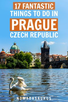 Visiting the capital of the Czech Republic for the first time? Here are 17 FANTASTIC things to do in Prague! Read for a full travel guide on what to do, see, eat, drink, and more. We are want to say thanks if you like to share […] Europe Travel Guide, Travel Guides, Travel Destinations, Travelling Europe, Traveling Tips, Travel List, Travel Hacks, Budapest, Prague Travel