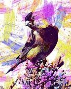 "New artwork for sale! - "" Goldfinch Bird Wildlife Nature  by PixBreak Art "" - http://ift.tt/2uz8Tpk"