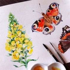 Бабочки-цветочки #иллюстрация #акварель #цветы #бабочка #illustration #illustrationart #paint #painting #drawing #sketch #watercolor #waterblog #pimlena #watercolorart #watercolorsketch #art #art_we_inspire #topcreator #aquarelle #mullein #flower #summer #nature #peacock #butterfly