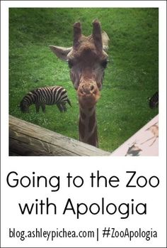"Wanting to add some learning to your zoo trips this summer?? Check out the ""Going to the Zoo with Apologia"" series on blog.ashleypichea.com for great resources and ideas! 