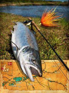 California Hook opp Sportfishing