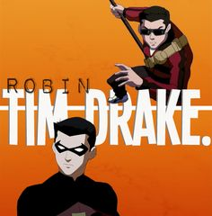 Robin/Tim Drake. Probably my least favorite...Unless you count Steph Brown...I mean, good for her, girl power, woohoo!! But I think it was executed poorly. I wish she died.