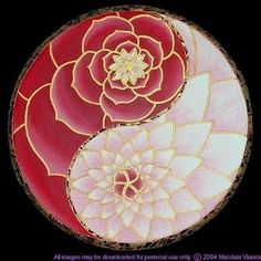 Lotus Yin and Yang by Mágico y Celestial