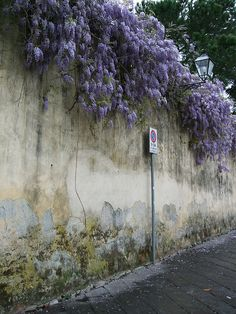 138 by Angel O., via Flickr