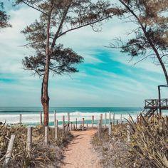 Recreio dos Bandeirantes: o que conhecer nesse bairro do Rio de Janeiro Lets Run Away, Tropical Paradise, Running Away, Good Vibes, To Go, Around The Worlds, Beach, Places, Water