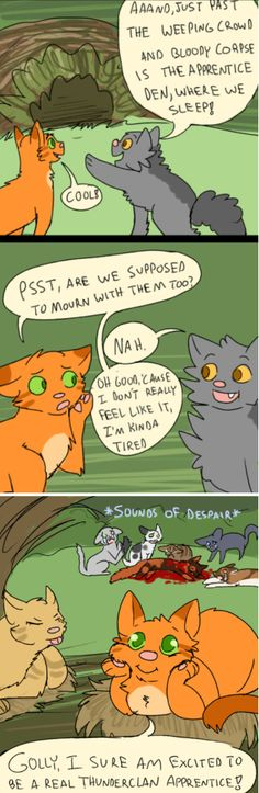 Firestar coming to thunderclan in a nutshell. Warrior Cats Funny, Warrior Cats Comics, Warrior Cat Memes, Warrior Cats Series, Warrior Cats Books, Warrior Cats Fan Art, Cat Comics, Warriors Memes, Love Warriors