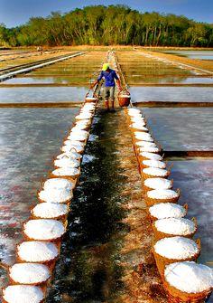 Salt Farm, Dasol, Pangasinan  Great photo from Dan Goodine.
