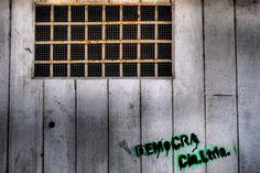 """08-11-2012 """"DEMoCRA Cía. Ltda."""""""
