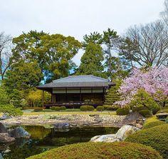 Kyoto   #japan #kyoto #nature #spring #japanese #sakura by exploringjapan