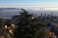 65 Best Bergamo Images In 2017 Trip Advisor Attraction