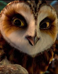 Amazing owl face close-up.<<<giggling madly right now because that's actually Otulissa, an animated owl from the Legend of the Gaurdians: Owls of Ga'Hoole movie Owl Photos, Owl Pictures, Beautiful Owl, Animals Beautiful, Animal Original, Animals And Pets, Cute Animals, Wild Animals, Owl Bird