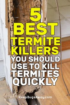 Are you trying to prevent a termite infestation? Is your biggest worry the effects that chemical laden pesticides might have on your home and yard? Here are a few natural home remedies for termite control that work wonderfully as prev Bug Control, Pest Control, House Insects, Termite Control, Garden Guide, Garden Pests, Natural Home Remedies, Insects, Natural Remedies