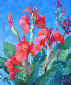 pictures of canna lillies | Captivating Canna Lilies 24″ x 20″ Original Oil Painting