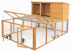 Liberta Sedgemoor Rabbit Run – Next Day Delivery Liberta Sedgemoor Rabbit Run Large Rabbit Run, Large Rabbit Hutch, Rabbit Hutches, Bunny Sheds, Rabbit Farm, Meat Rabbits, Bunny Care, Online Pet Store, Wooden Dining Chairs