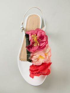 Shop Charlotte Olympia 'Rosario' floral sandals in Biondini Paris from the world's best independent boutiques at farfetch.com. Over 1000 designers from 300 boutiques in one website.
