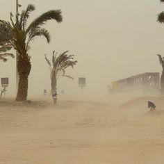 Tempestade de areia atinge circuito do GP do Bahrein (Foto: Divulgação)