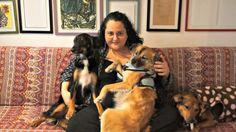 TAG: meus animais de estimação | Mexidinho | Laboratório dos sentidos