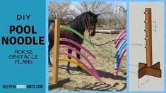 FREE project sheet to build your own DIY Pool Noodle Horse Obstacle. We cover materials and step-by-step directions for your pool noodle obstacle course. Horse Training Tips, Horse Tips, Pool Noodle Horse, Horse Riding Quotes, Horse Camp, Diy Pool, Horse Ranch, Barrel Horse, Pool Noodles