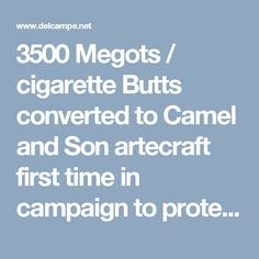 3500 Megots / cigarette Butts converted to Camel and Son  artecraft first time in campaign to protect Enviroment | For sale on Delcampe