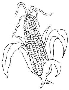 Eglenceli Sebze Kartlari Ve Boyama Sayfalari 32 çizimler Frozen