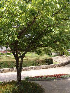 Praça do Labirinto Verde, Nova Petrópolis, RS, Brasil.