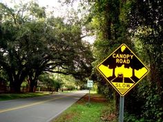 Tallahassee, Florida's Canopy Roads http://www.leoncountyfl.gov/pubworks/oper/canopy/PDF/canopyrds_all.pdf