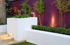 Painted rendered walls.  Rosie Landscapes has incorporated rendered walls into several of its garden projects.