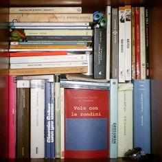 #trova l'#intruso !!! #voloconlerondini è uno dei #libri #finalisti del concorso #ilmioesordio2016 . @ilmiolibro.it Sappiate che ad ogni cuoricino ricevuto, la mia #influenza passa più velocemente... quindi aiutatemi altrimenti consumerò due platani di #fazzoletti  Ecco il link del libro: http://ilmiolibro.kataweb.it/libro/poesia/267661/volo-con-le-rondini-3/