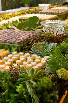Casamento na praia com decoração moderna - mesa de doces com arranjos verdes de suculentas, folhagens e flores ( Decoração: Flor e Forma )