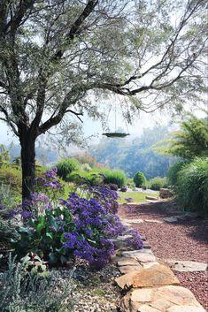 Starting from scratch on this northern NSW property, garden designer Carolyn Robinson has created an all-Australian garden with a New England twist. Love Garden, Dream Garden, Home And Garden, Australian Garden, Australian Homes, Most Beautiful Gardens, Amazing Gardens, Landscaping Tips, Garden Landscaping