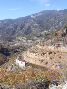 Code No.10380    A agricultural land for sale in the village Pelendri  in Limassol.