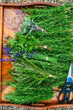 Drying Herbs - A Healthy Life For Me