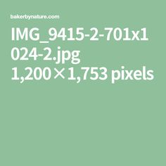 IMG_9415-2-701x1024-2.jpg 1,200×1,753 pixels