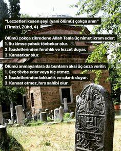 Islam, Words, Muslim, Horse