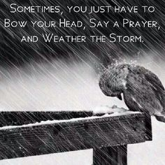 Weathering the storm can be difficult, but God will deliver us all if we call on Him!