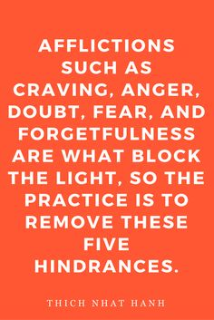Thich Nhat Hanh Living Buddha Living Christ Quotes Spirituality Afflictions