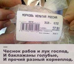 ценники маразмы на прилавках магазинов (8)