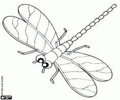 Bugs, Pond Life, Preschool Activities, Line Drawing, Paper Dolls, Applique, Mandala, Education, Drawings